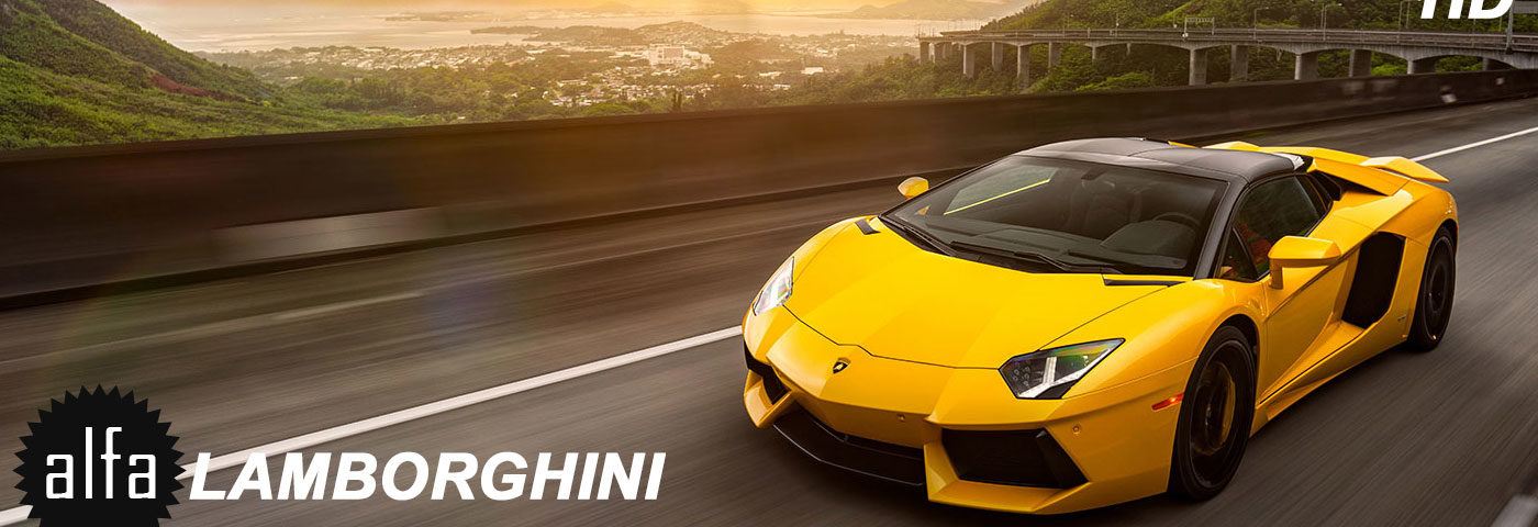 12 Cool Facts About Lamborghini Alfa Wallpapers